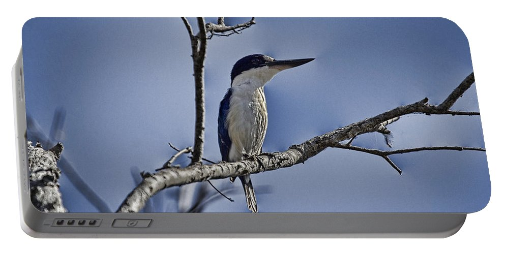 Kingfisher Portable Battery Charger featuring the photograph Blue Skies V2 by Douglas Barnard