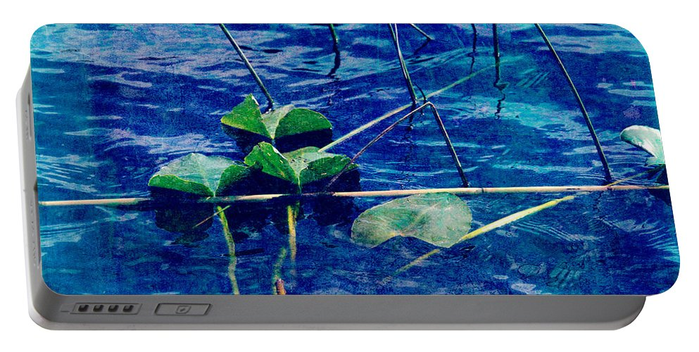 Blue Portable Battery Charger featuring the photograph Blue by Susanne Van Hulst