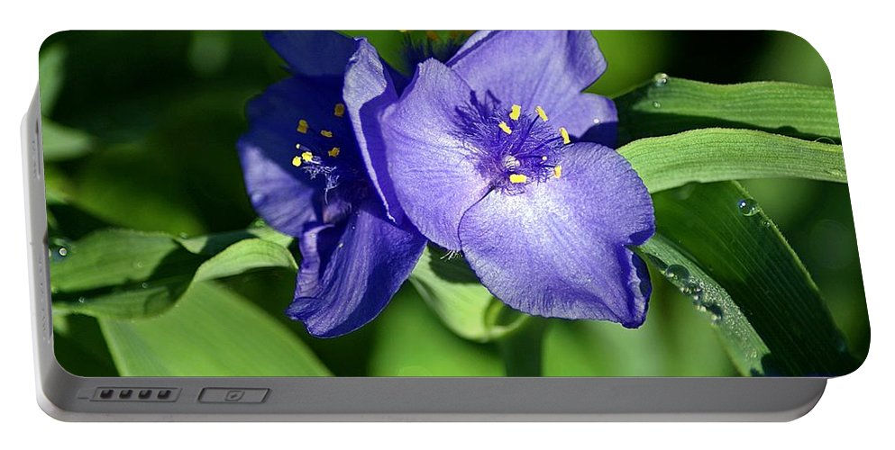 Blue Portable Battery Charger featuring the photograph Blue Wildflower 3 by Joe Faherty