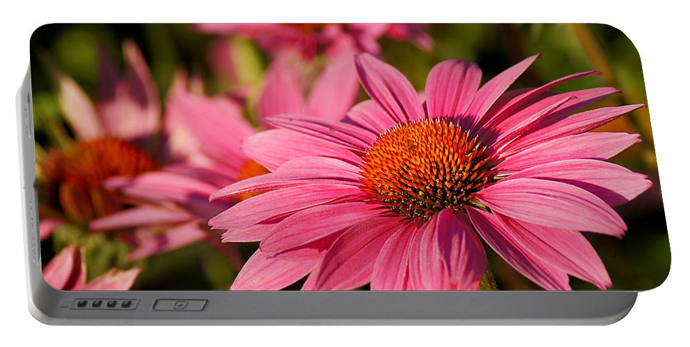 Flower Portable Battery Charger featuring the photograph Bold And Beautiful by Bill Pevlor