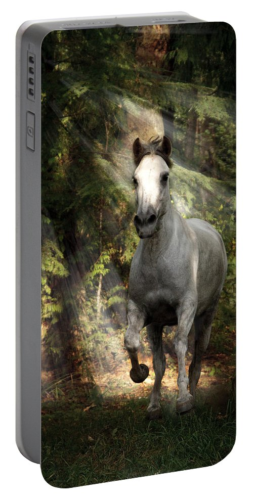 Breaking Dawn Gallop Portable Battery Charger featuring the photograph Breaking Dawn Gallop by Wes and Dotty Weber