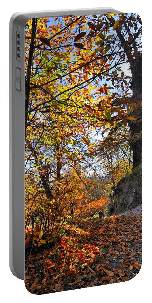 Landscapes Portable Battery Charger featuring the photograph Bright Leaves by Guido Montanes Castillo