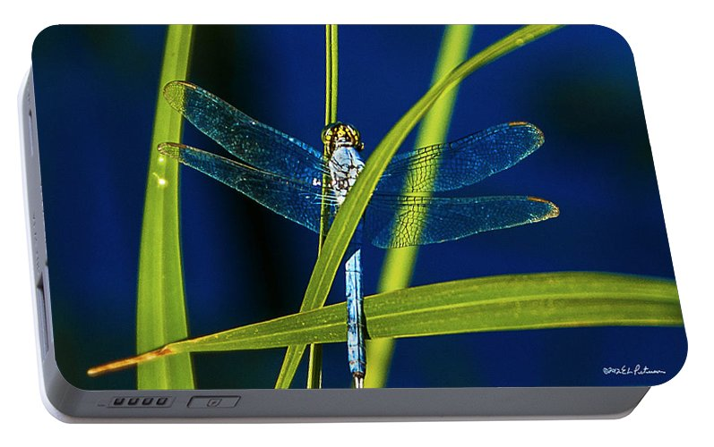 Heron Haven Portable Battery Charger featuring the photograph Brilliant Dragon Fly by Edward Peterson