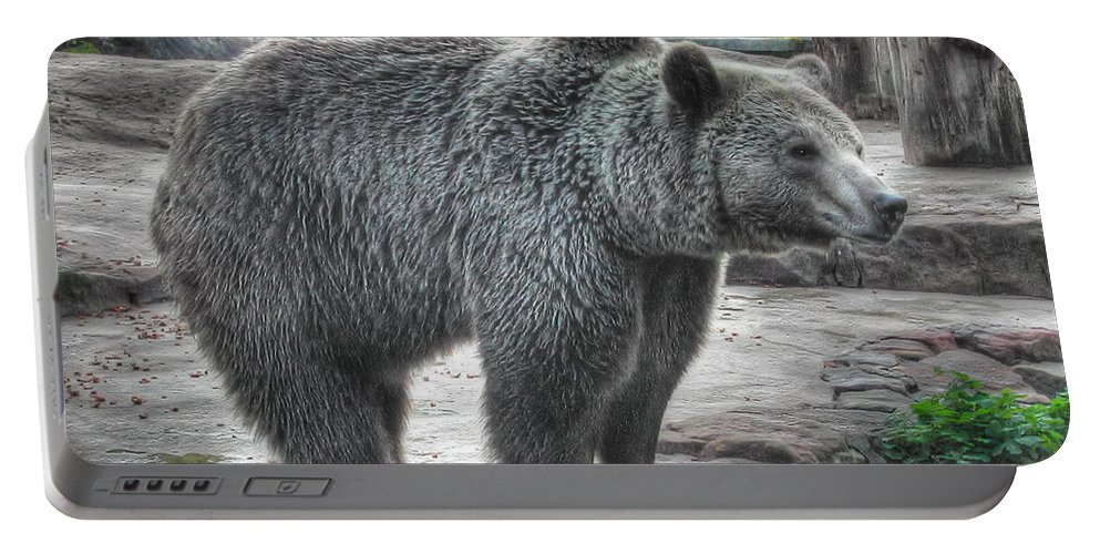 Brown Portable Battery Charger featuring the photograph Brown Bear by Mats Silvan