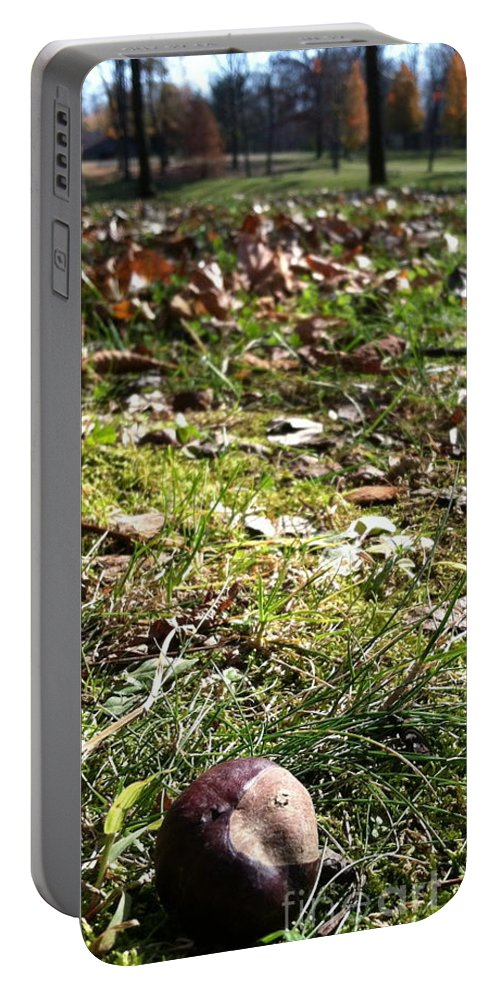Landscape Portable Battery Charger featuring the photograph Buckeye Lakeview by Trish Hale
