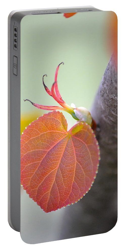 Heart Portable Battery Charger featuring the photograph Budding Heart by JD Grimes