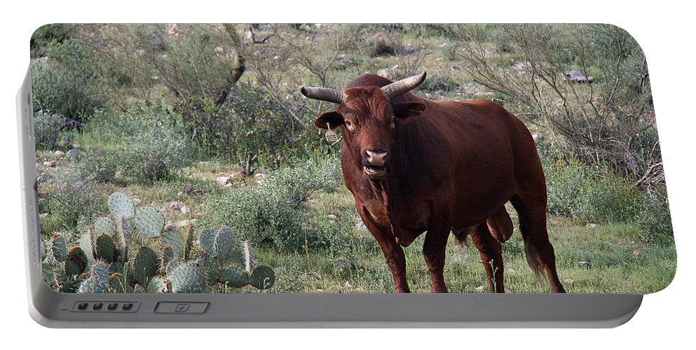 Bull Portable Battery Charger featuring the photograph Bull by Elizabeth Rose