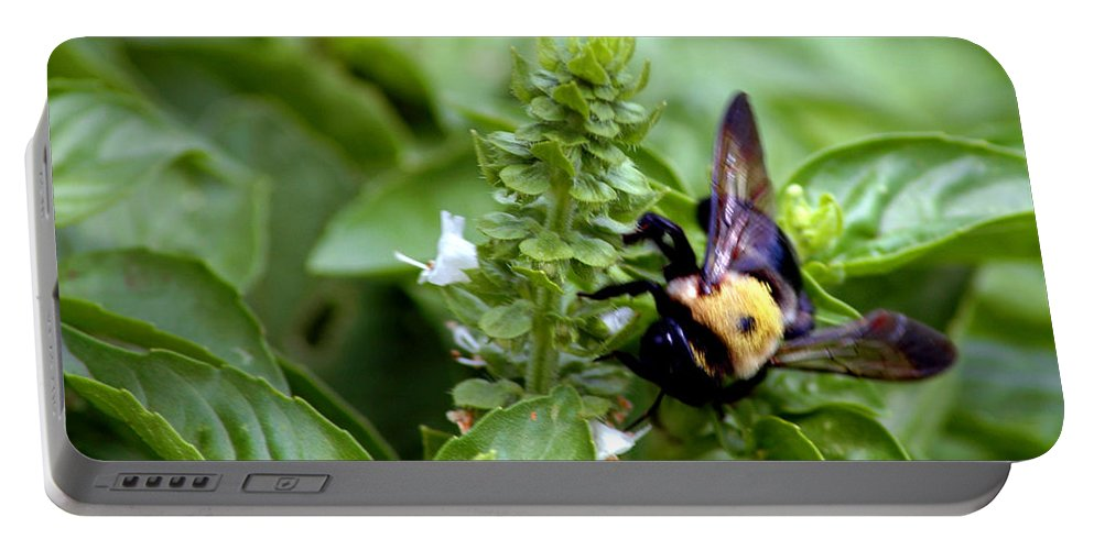 Usa Portable Battery Charger featuring the photograph Bumble Bee Buzz by LeeAnn McLaneGoetz McLaneGoetzStudioLLCcom
