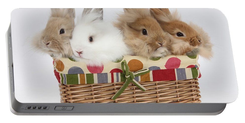 Nature Portable Battery Charger featuring the photograph Bunnies In A Basket by Mark Taylor