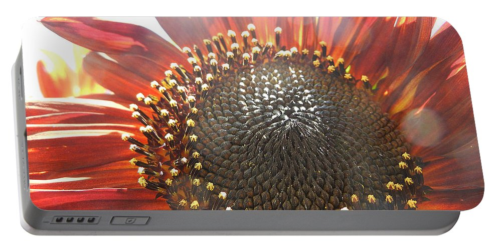 Flower Portable Battery Charger featuring the photograph Burgundy Sunflower In Sun Rays by Jim And Emily Bush