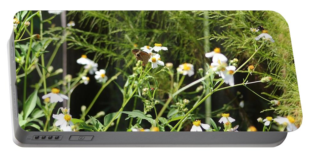 Butterfly Portable Battery Charger featuring the photograph Butterfly 1 by Michelle Powell