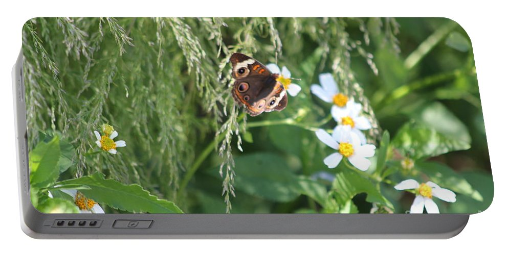 Butterfly Portable Battery Charger featuring the photograph Butterfly 11 by Michelle Powell