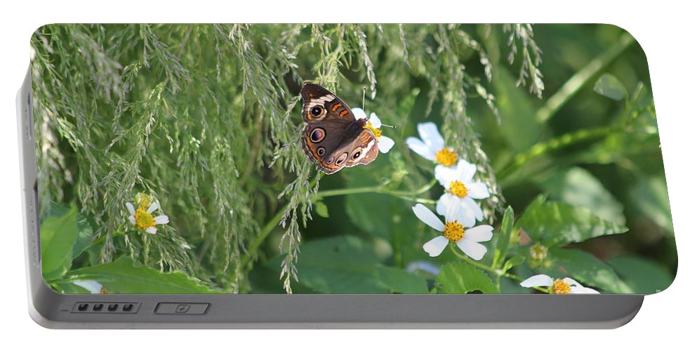 Butterfly Portable Battery Charger featuring the photograph Butterfly 12 by Michelle Powell