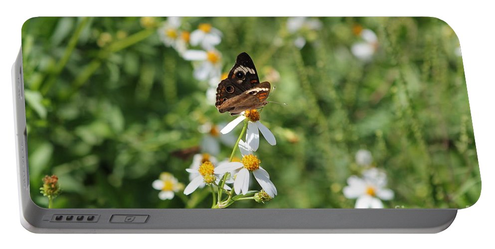 Butterfly Portable Battery Charger featuring the photograph Butterfly 23 by Michelle Powell
