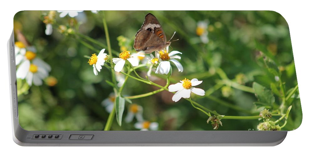 Butterfly Portable Battery Charger featuring the photograph Butterfly 24 by Michelle Powell