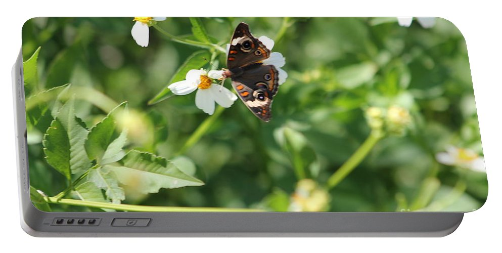Butterfly Portable Battery Charger featuring the photograph Butterfly 25 by Michelle Powell