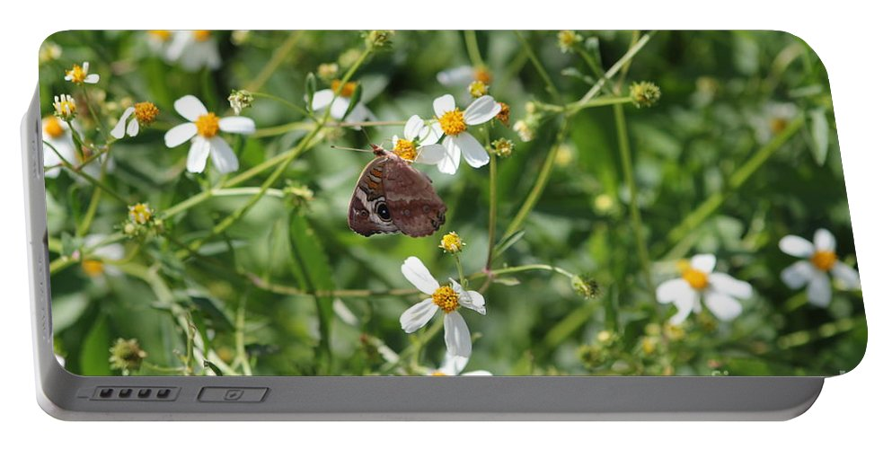 Butterfly Portable Battery Charger featuring the photograph Butterfly 28 by Michelle Powell