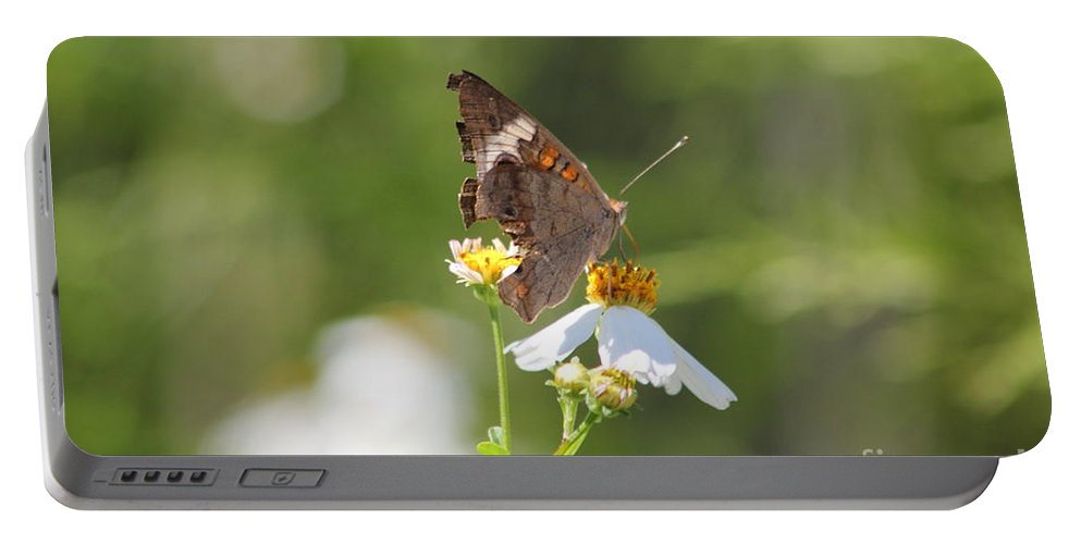 Butterfly Portable Battery Charger featuring the photograph Butterfly 3 by Michelle Powell