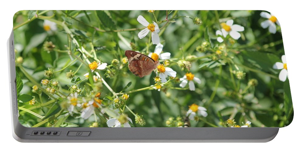 Butterfly Portable Battery Charger featuring the photograph Butterfly 31 by Michelle Powell