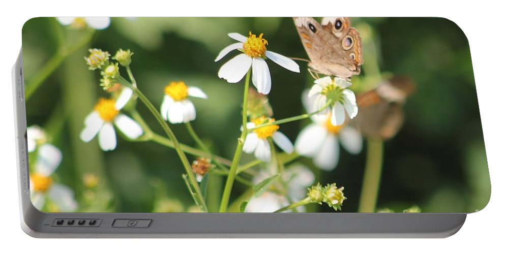Butterfly Portable Battery Charger featuring the photograph Butterfly 44 by Michelle Powell