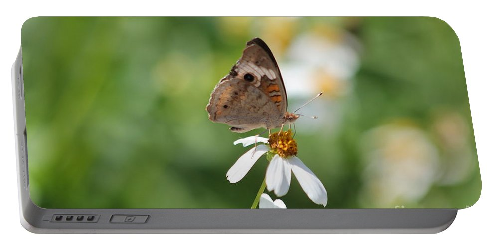Butterfly Portable Battery Charger featuring the photograph Butterfly 5 by Michelle Powell