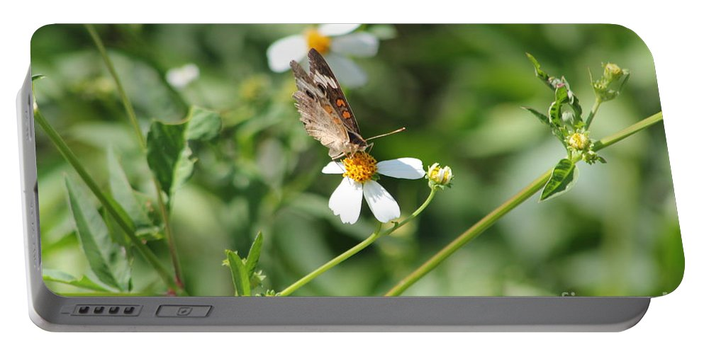 Butterfly Portable Battery Charger featuring the photograph Butterfly 7 by Michelle Powell