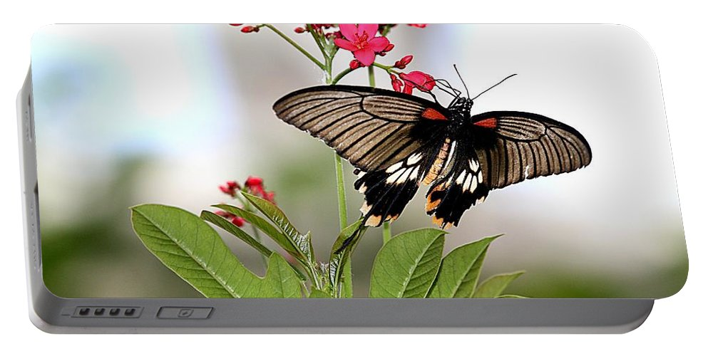 Butterfly Portable Battery Charger featuring the photograph Butterfly Candy by Elizabeth Winter