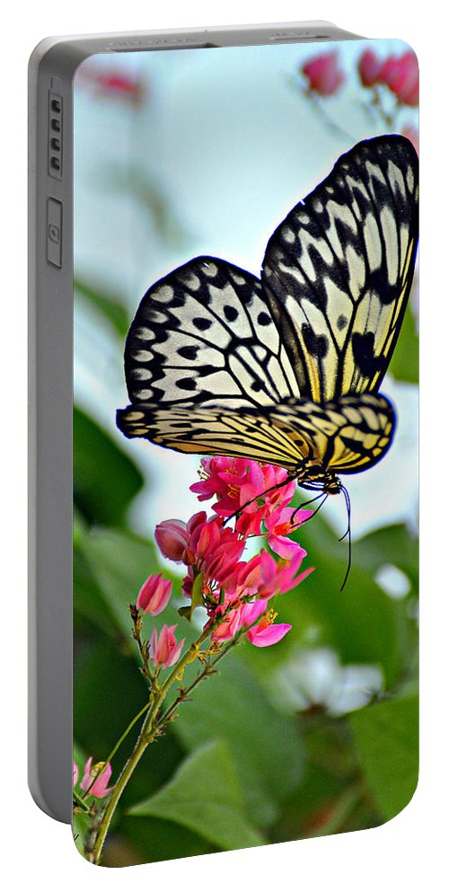 Butterfly Portable Battery Charger featuring the photograph Butterfly Glow by Marty Koch