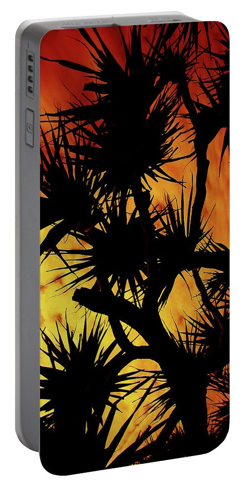 Photography Portable Battery Charger featuring the photograph By Night by Karen Elzinga