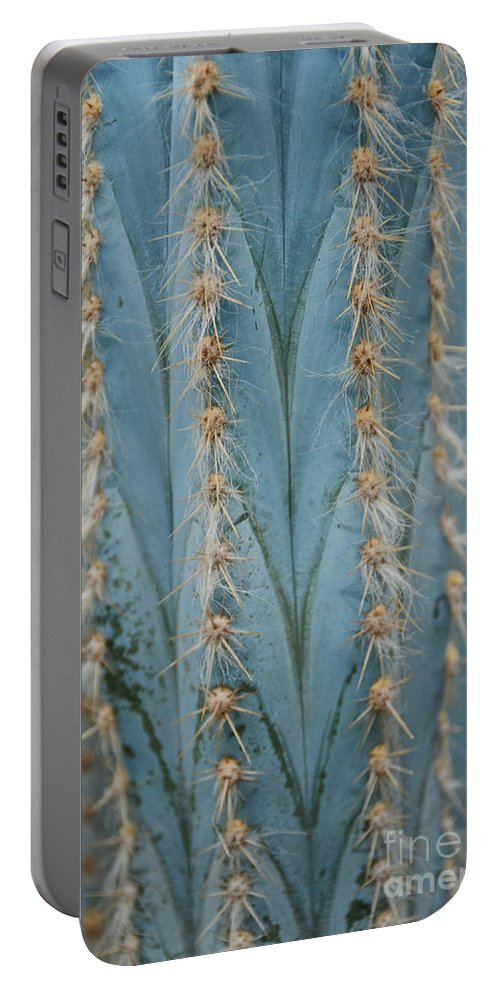 Cactus Portable Battery Charger featuring the photograph Cactus 13 by Cassie Marie Photography