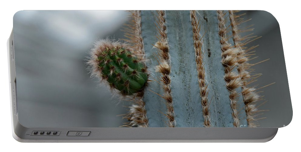 Cactus Portable Battery Charger featuring the photograph Cactus 17 by Cassie Marie Photography