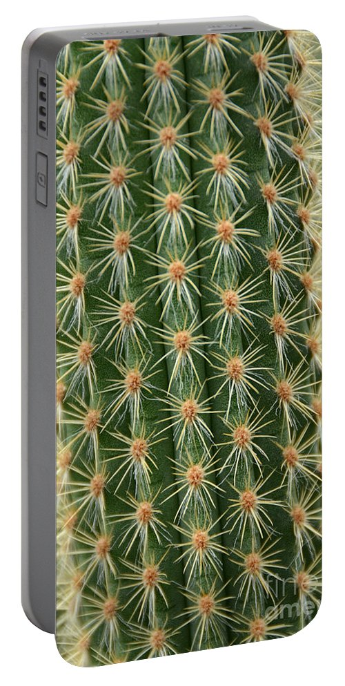Cactus Portable Battery Charger featuring the photograph Cactus 19 by Cassie Marie Photography