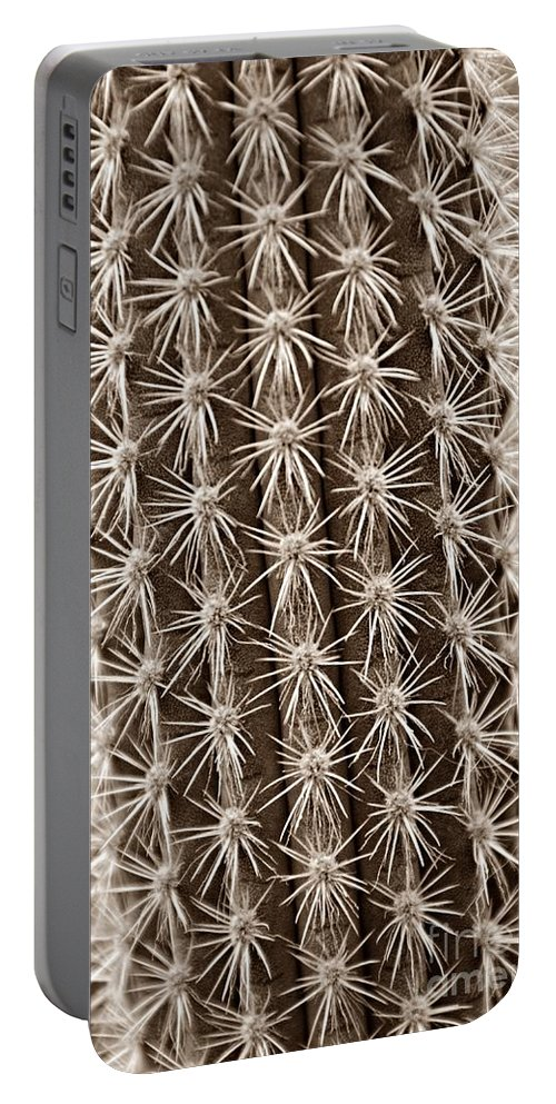 Cactus Portable Battery Charger featuring the photograph Cactus 19 Sepia by Cassie Marie Photography