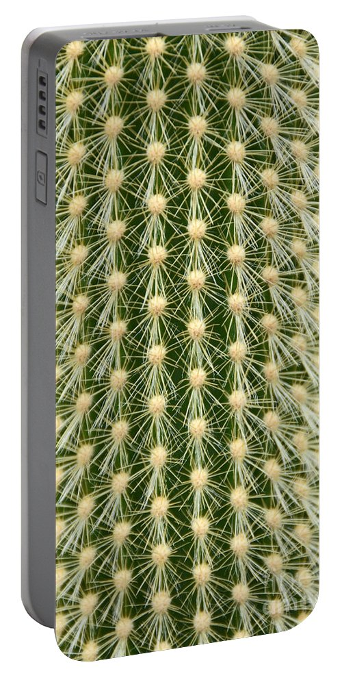 Cactus Portable Battery Charger featuring the photograph Cactus 21 by Cassie Marie Photography