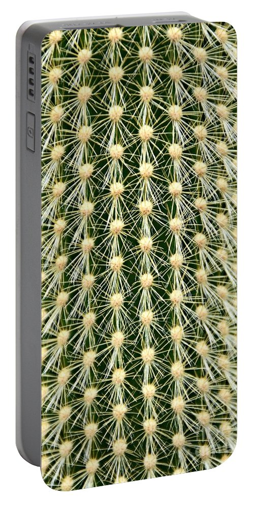 Cactus Portable Battery Charger featuring the photograph Cactus 21 Contrast by Cassie Marie Photography