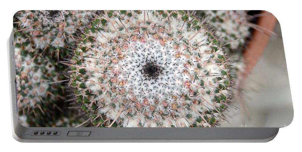 Cactus Portable Battery Charger featuring the photograph Cactus 42 by Cassie Marie Photography