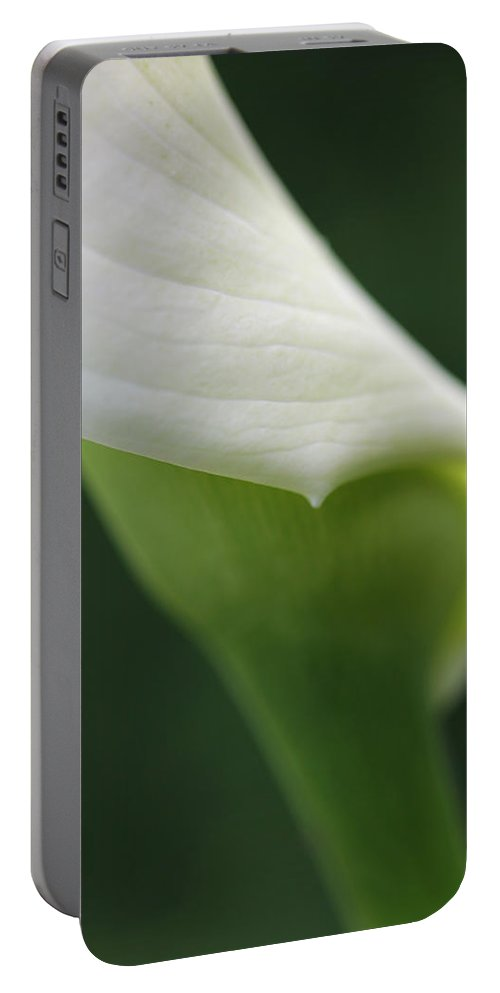 Calla Portable Battery Charger featuring the photograph Calla Lily Flower Petal Macro by Jennie Marie Schell