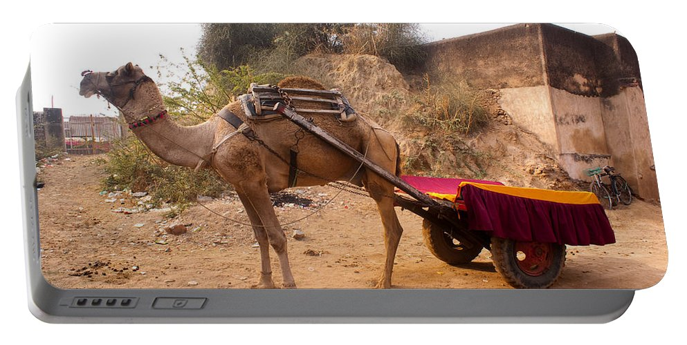 Ship Of The Desert Portable Battery Charger featuring the photograph Camel Yoked To A Decorated Cart Meant For Carrying Passengers In India by Ashish Agarwal