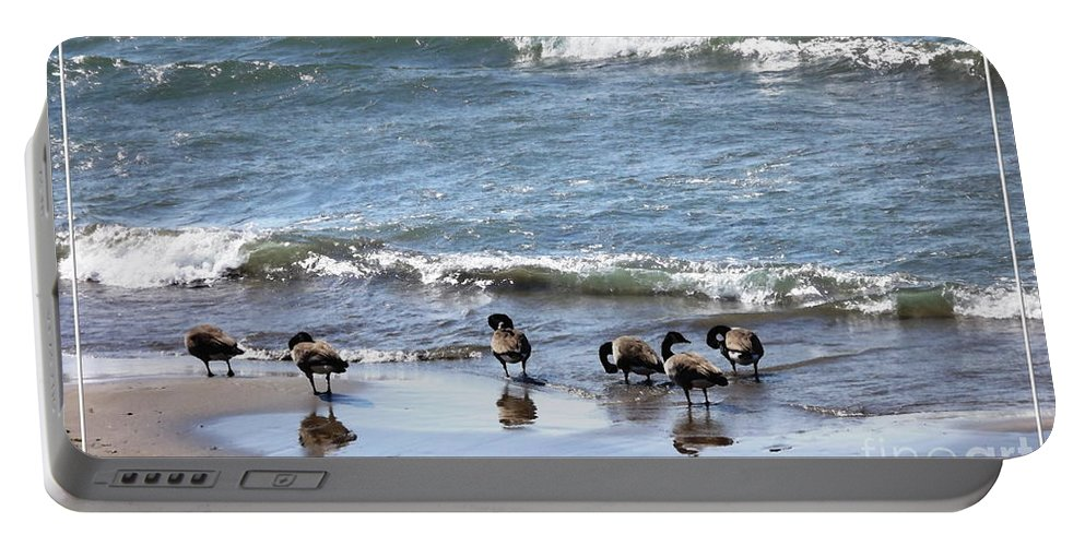Canada Geese Portable Battery Charger featuring the photograph Canada Geese In Lake Erie by Rose Santuci-Sofranko