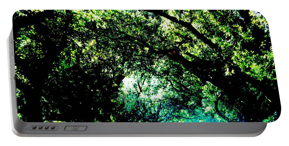 Live Oak Portable Battery Charger featuring the photograph Canopy by Lizi Beard-Ward