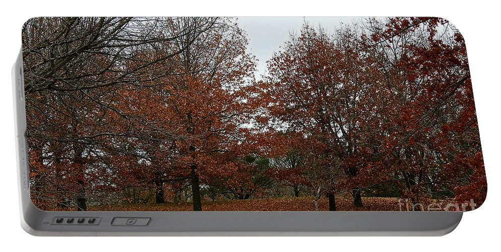 Outdoors Portable Battery Charger featuring the photograph Carpeted by Susan Herber