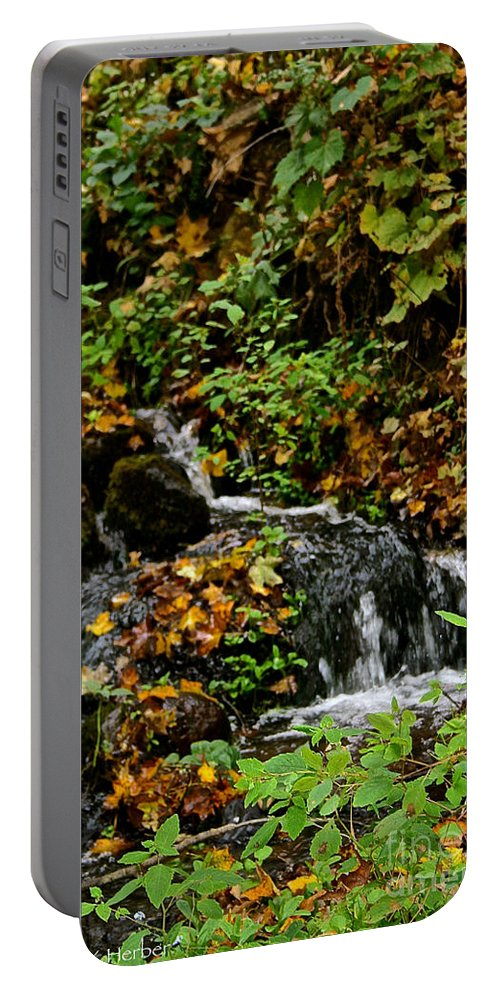 Landscape Portable Battery Charger featuring the photograph Casual Creek by Susan Herber