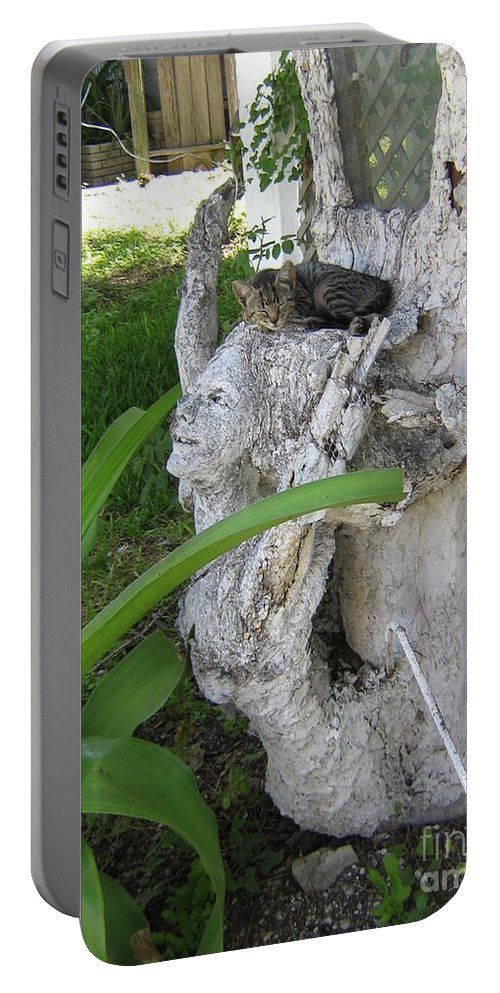 Hebron Chism Portable Battery Charger featuring the photograph Cat Nap by Hebron Chism