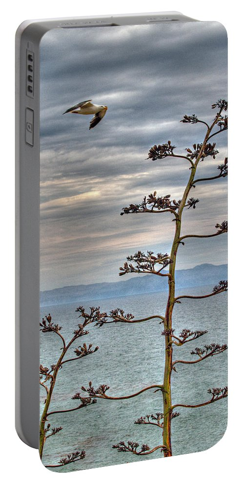 Catalina Island Portable Battery Charger featuring the photograph Catalina Gull And Channel by Joe Schofield