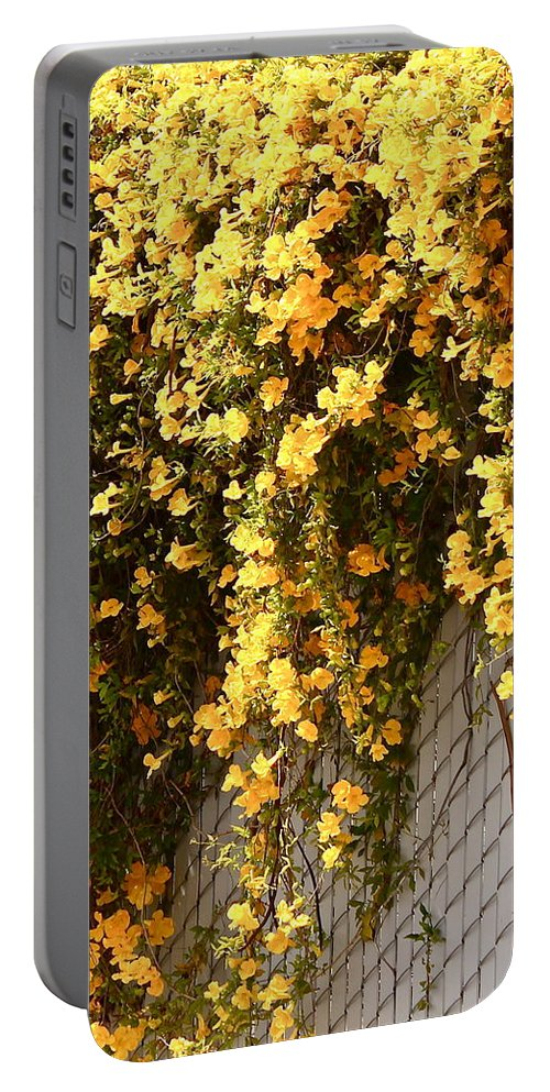 Floral Portable Battery Charger featuring the photograph Cat's Claws Vine by Kume Bryant