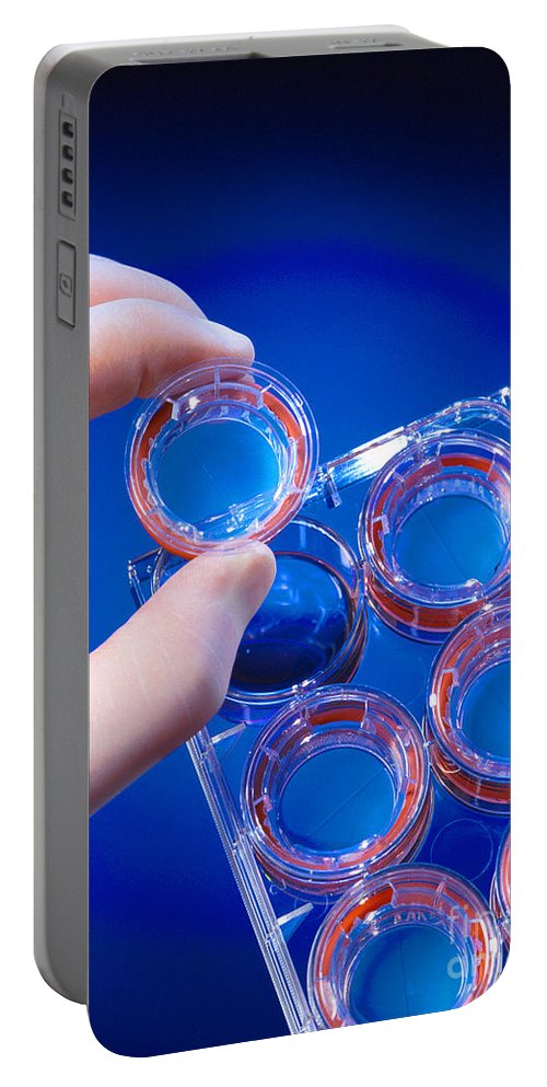 Nutrient Simulation Portable Battery Charger featuring the photograph Cellular Model Of Nutrient Absorption by Science Source
