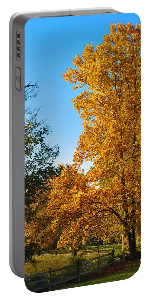 Fall Portable Battery Charger featuring the photograph Changing Leaves by Bill Cannon