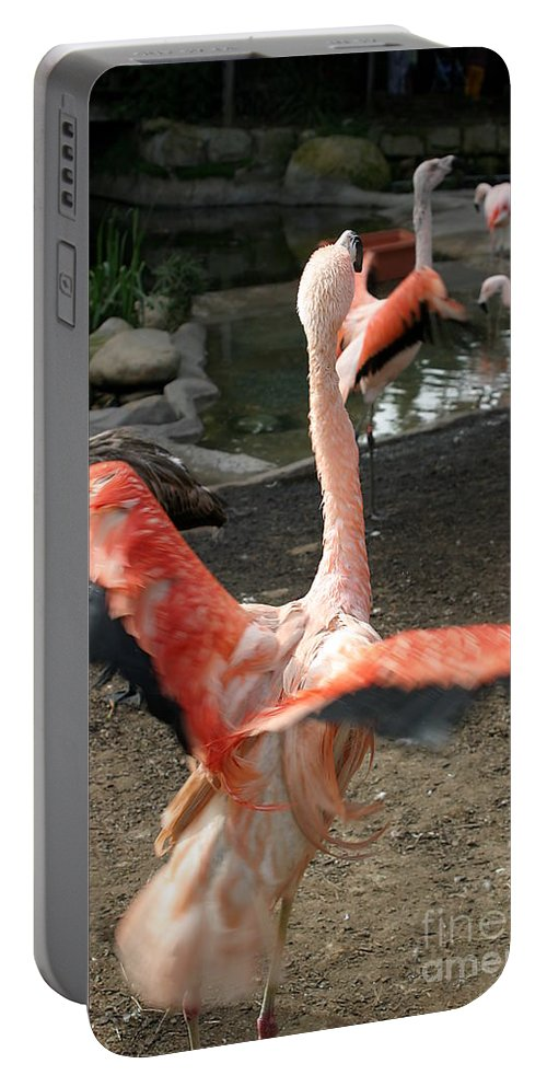 Pink Portable Battery Charger featuring the photograph Chilean Flamingo by Henrik Lehnerer