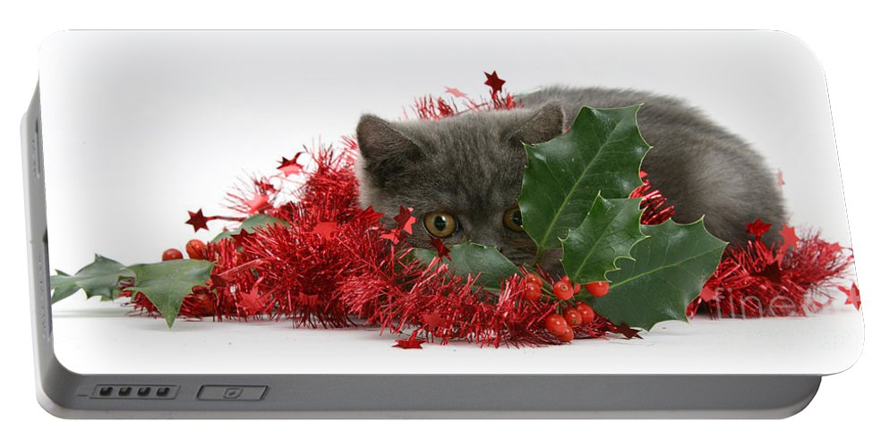 Animal Portable Battery Charger featuring the photograph Christmas Kitten by Mark Taylor