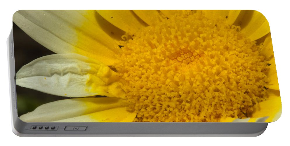 Flower Portable Battery Charger featuring the photograph Close Up Of The Inside Of A Yellow And White Sun Flower by Ashish Agarwal